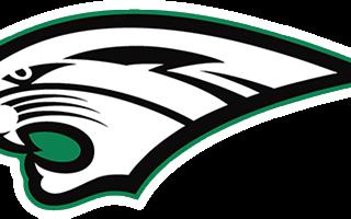 Washington Wildcat